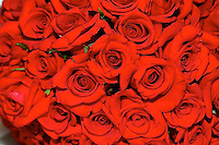 Tightly bunched red roses