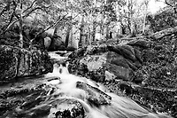 Monochrome_Rivers, Lakes, Streams