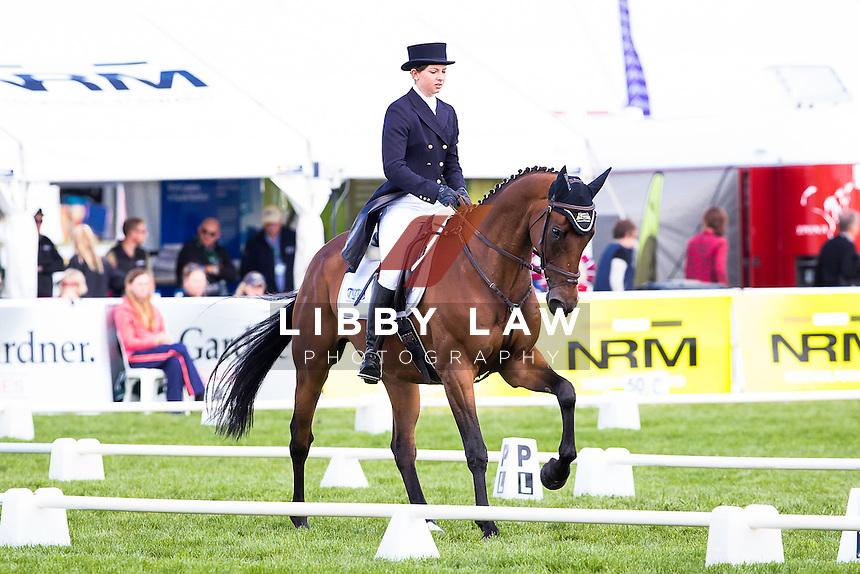 NZL-Samantha Felton (RICKER RIDGE ESCADA) EVENTING: CIC3* DRESSAGE: 2015 NZL-Farmlands Horse Of The Year Show, Hastings (Thursday 19 March) CREDIT: Libby Law CREDIT: LIBBY LAW PHOTOGRAPHY