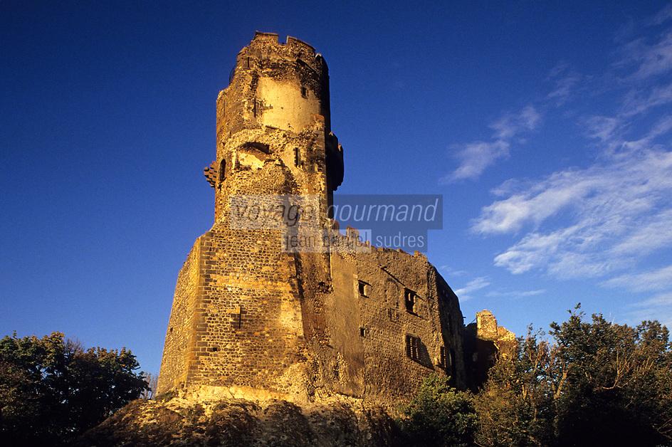 Europe/France/Auverne/63/Puy-de-Dôme/Env. de Riom: Le Château féodal de Tournoël