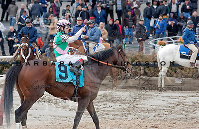 Everybody looks as Lunar Victory, bleeding from the nostrils, approaches the winner's circle.  His jockey Junior Alvarado signals, perhaps summoning the horse's connections.