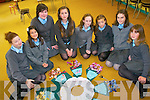 Pupils, parents and members of the local community have all come together to create a commemorative circle of lace to mark the 150th anniversary of the arrival of the Poor Clare Nuns to Kenmare. .L-R Lauren Frampton, Aisling Bhamvira, Megan Desilva, Andrea Pavlovic, Niamh Crowley, Caoimhe Quinlan, Ellen Sweeney and Joanne McCarthy.