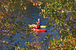 Two kayaks on the Clark Fork River in Missoula, Montana framed by tree branches