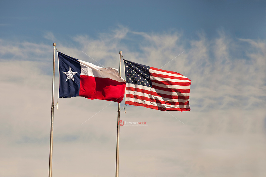 A Texas and US flag boldly flapping in the wind on Veterans Day Holiday