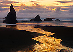 Bandon State Park, OR  © Terry Donnelly<br /> Sunset reflections at low tide with silhouetted seastacks at Bandon Beach