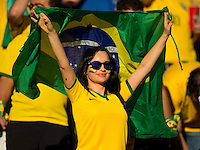 A Brazil fan holding flag