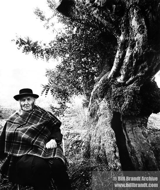 Robert Graves, 1978