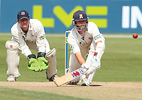 Cricket 2008-07