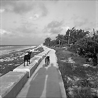 2+2+Ocean<br /> From &quot;The other places&quot; series. Grand Bahama Island, 2010