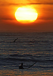 A lone surfer at sunset at Marvericks beach in Half Moon Bay, California.