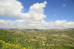 Samaria, a view East of Sebastia