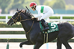 Ares Barows (Yuji Hishida), AUGUST 19, 2018 - Horse Racing : Ares Barows ridden by Yuji Hishida wins the TV Nishinippon Corp.Sho Kitakyushu Kinen at Kokura Racecourse in Fukuoka, Japan. (Photo by Eiichi Yamane/AFLO)