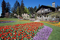 Stanley Park, Vancouver, BC, British Columbia, Canada - Flowers blooming in Flower Gardens at Stanley Park Pavilion