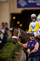 DEL MAR, CA - NOVEMBER 03: Forever Unbridled #6, ridden by John Velazquez beforeThe Breeders' Cup Distaff at Del Mar Thoroughbred Club on November 03, 2017 in Del Mar, California. (Photo by Alex Evers/Eclipse Sportswire/Breeders Cup)