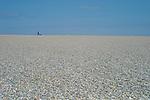 England,Norfolk,Coast, Salthouse