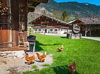 Oesterreich, Tirol, Wanderdorf Kramsach: Freilichtmuseum Tiroler Bauernhoefe - Hoerl Hof und Scheune | Austria, Tyrol, Kramsach: open-air museum Tyrolean Farmhouses - 'Hoerl' farmhouse and barn