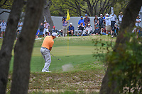 Sergio Garcia (ESP) chips on to 7 during day 3 of the World Golf Championships, Dell Match Play, Austin Country Club, Austin, Texas. 3/23/2018.<br /> Picture: Golffile | Ken Murray<br /> <br /> <br /> All photo usage must carry mandatory copyright credit (&copy; Golffile | Ken Murray)