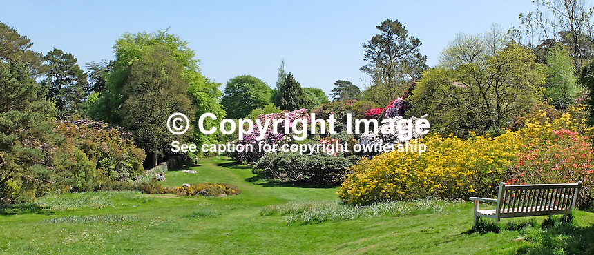 National Trust, Rowallane, Saintfield, N Ireland, UK, walled garden, May, 201505231085<br />