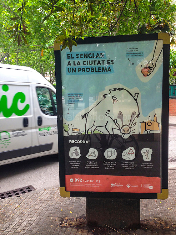 Poster warning against feeding wild boar in Sant Cugat del Valles, Catalonia, Spain.