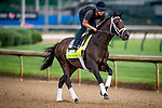 LOUISVILLE, KENTUCKY - MAY 02: Cutting humor prepares for the Kentucky Derby at Churchill Downs in Louisville, Kentucky on May 01, 2019. Evers/Eclipse Sportswire/CSM