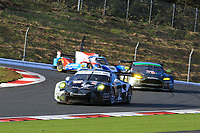 #88 ABU DHABI PROTON RACING (ARE) PORSCHE 911 RSR LMGTE AM  KHALED AL QUBAISI (ARE) DAVID HEINEMEIER HANSSON (DNK) PATRICK LONG (USA)