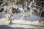Collage - Powder Skier