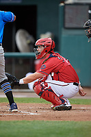 Harrisburg Senators catcher Taylor Gushue (36) waits to receive a pitch during a game against the Akron RubberDucks on August 18, 2018 at FNB Field in Harrisburg, Pennsylvania.  Akron defeated Harrisburg 5-1.  (Mike Janes/Four Seam Images)