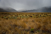 Rain clouds sweep across the St James station landscape near Lake Tennyson, Hurunui District, Canterbury, South Island, New Zealand.