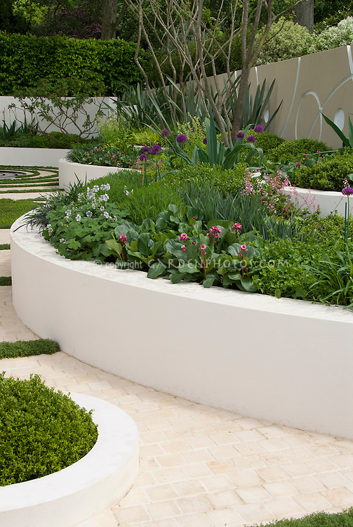 White wall and raised curving beds plant flower stock raised white concrete beds with curving pathway green and white color theme perennials and mightylinksfo