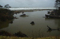 Kalaloch, Olympic National Park, Washington, US