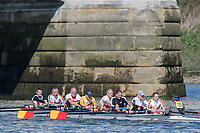 Mortlake/Chiswick, GREATER LONDON. United Kingdom. Tideway Scullers School/Tyne Amateur Rowing Club, MasG.8+, competing in the  2017 Vesta Veterans Head of the River Race, The Championship Course, Putney to Mortlake on the River Thames.<br /> <br /> <br /> Sunday  26/03/2017<br /> <br /> [Mandatory Credit; Peter SPURRIER/Intersport Images]