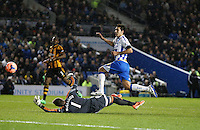 140217 Brighton & Hove Albion v Hull City