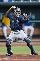 Catcher Angel Salome (26) of the Huntsville Stars on defense at the Baseball Grounds in Jacksonville, FL, Wednesday June 11, 2008.