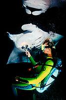 scuba diver and reef manta ray, Manta alfredi, feeding at night, Big Island, Hawaii, USA, Pacific Ocean