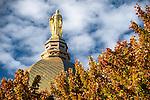BJ 10.11.16 Golden Dome 10483.JPG by Barbara Johnston/University of Notre Dame