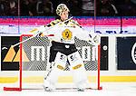 ***BETALBILD***  <br /> Stockholm 2015-09-19 Ishockey SHL Djurg&aring;rdens IF - Skellefte&aring; AIK :  <br /> Skellefte&aring;s m&aring;lvakt Markus Svensson under matchen mellan Djurg&aring;rdens IF och Skellefte&aring; AIK <br /> (Foto: Kenta J&ouml;nsson) Nyckelord:  Ishockey Hockey SHL Hovet Johanneshovs Isstadion Djurg&aring;rden DIF Skellefte&aring; SAIK portr&auml;tt portrait