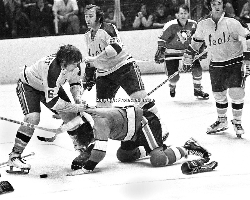 Seals vs Penguins ...1969?. Bob Stewart beats up Penguin Bryan Hextall, Seals Joey Johnston and Rick Smith look on..Ron Riesterer/photo