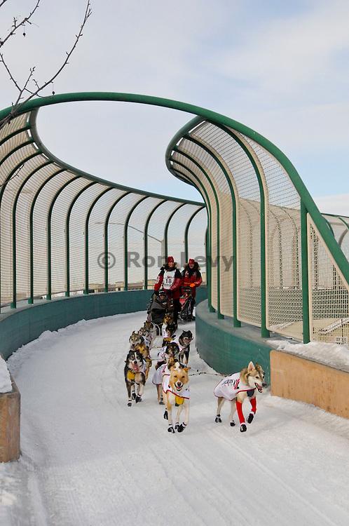 Aliy Zirkle exits Tudor Bridge through Anchorage, Alaska during Iditarod 2011.