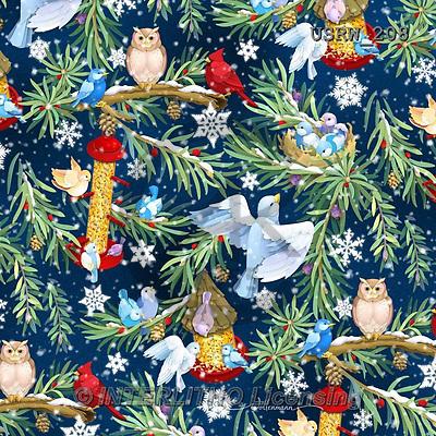 Randy, GIFT WRAPS, GESCHENKPAPIER, PAPEL DE REGALO, paintings+++++Wintering-Birds-Blue-background,USRW208,#GP# Christmas napkins