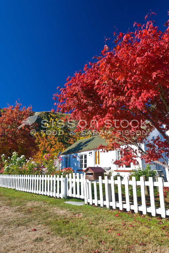 Autumn colours surround an old cottage in the historic village of Arrowtown, Central Otago, South Island, New Zealand
