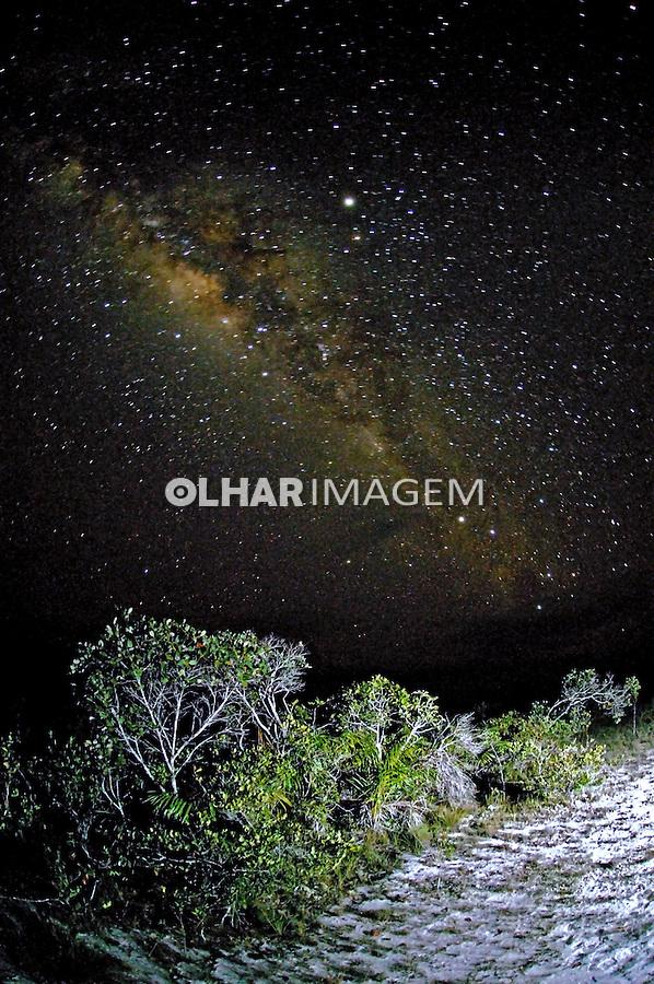 Vista da Via Láctea na Floresta Amazônica. Amazonas. 2008. Foto de Zig Koch.