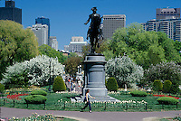 Public Garden springtime, Boston