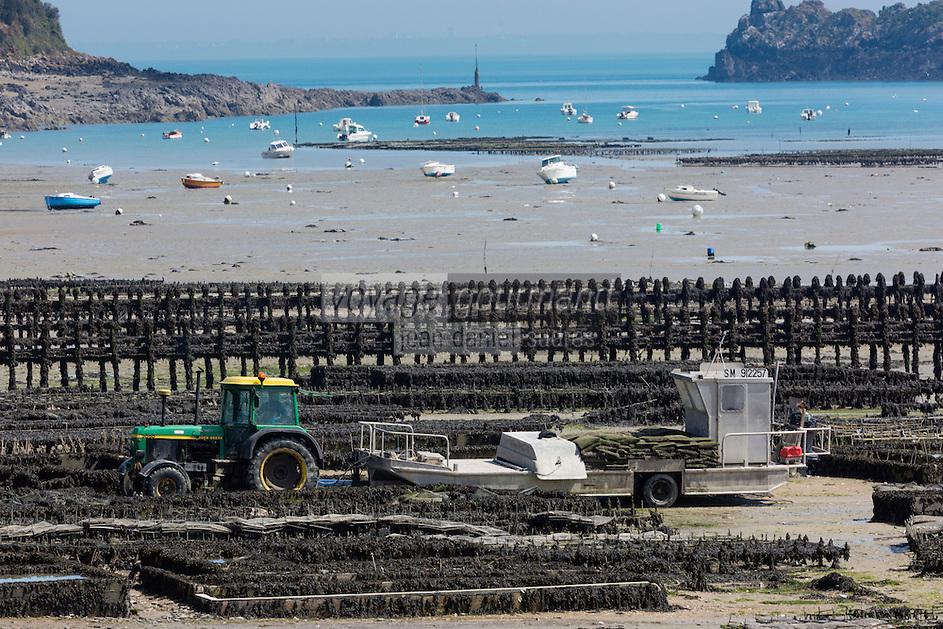 France, Ille-et-Vilaine (35), Cancale, Les Parcs à Huîtres  //France, Ille et Vilaine, Cancale, Oyster farm : Cancale oysters, local oysters