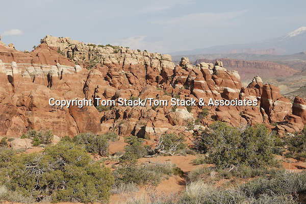 Arches National Park, Utah, the Fiery Furnace.