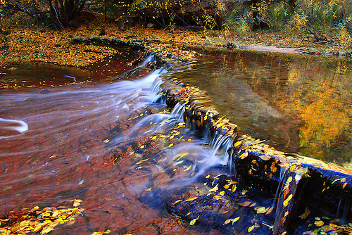 Water flows from the Left Fork of North Creek during autumn at Zion National Park