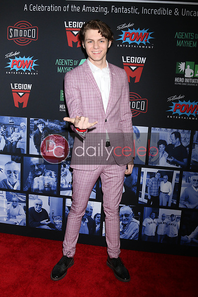 "Ty Simpkins<br /> at ""Excelsior! A Celebration of the Amazing, Fantastic, Incredible & Uncanny Life of Stan Lee,"" TCL Chinese Theater, Hollywood, CA 01-30-19<br /> David Edwards/DailyCeleb.com 818-249-4998"