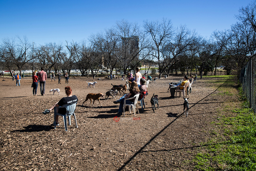 The Riverside Dog Park at Norwood Estate is a popular off-leash dog park located at I-35 and Riverside in downtown Austin, Texas.
