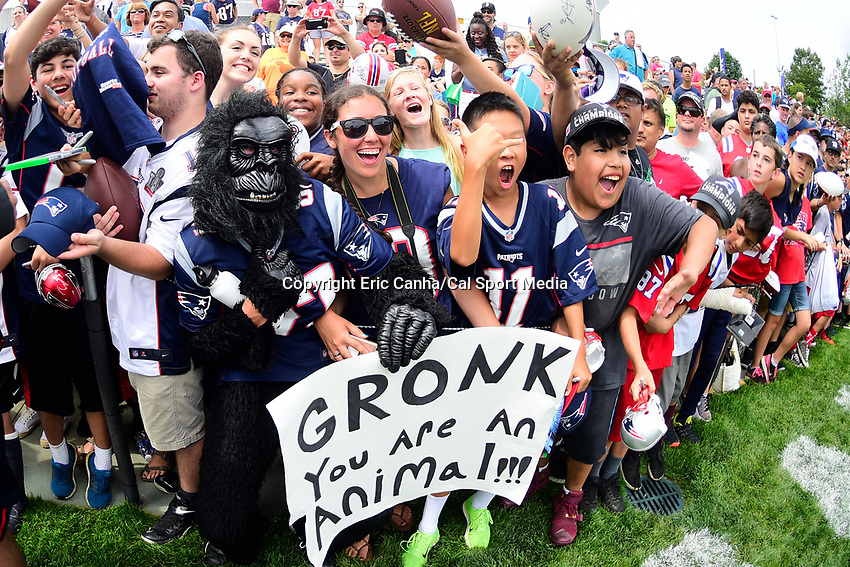 July 28, 2017: Fans lineup in hopes of getting autographs at the New England Patriots training camp held at Gillette Stadium, in Foxborough, Massachusetts. Eric Canha/CSM