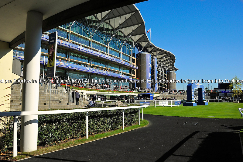 Scenes from around the track on October 15, 2011 during British Champions Day at Ascot Racecourse in Ascot, England.  (Bob Mayberger/Eclipse Sportswire)