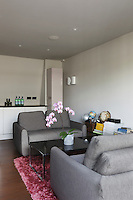 A pair of grey cloth sofas is complemented by a pnk shag-pile rug and a pink orchid in the basement sitting area